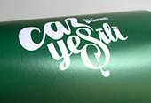 Logo for Garanti Caz Yesili