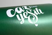 Logo for Garanti Caz Yesili
